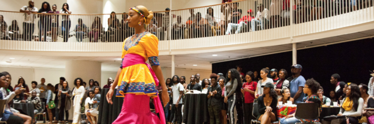 Southeastern Model African Union Africa Night